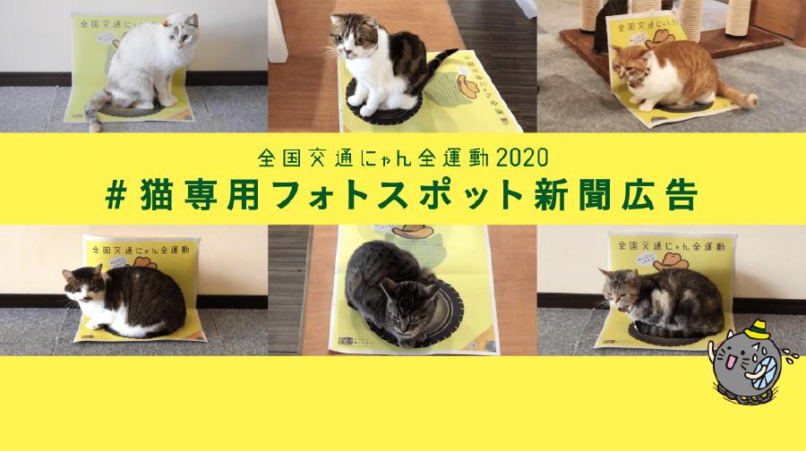 #猫専用フォトスポット新聞広告